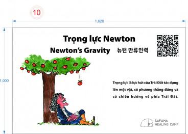 Trọng lực Newton